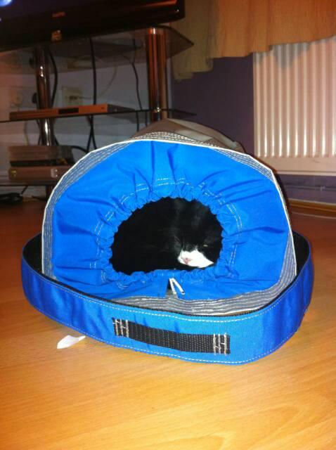 rigging bag+cat